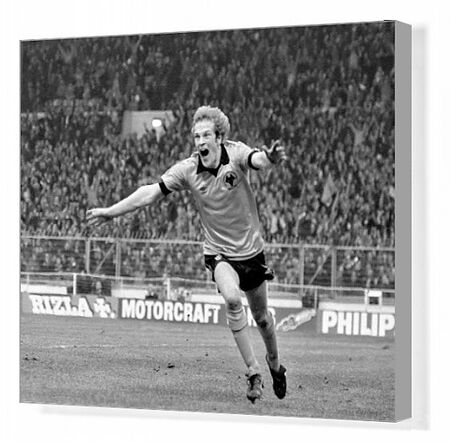 Andy Gray celebrates scoring the only goal of the game to hand the League Cup to Wolverhampton Wanderers