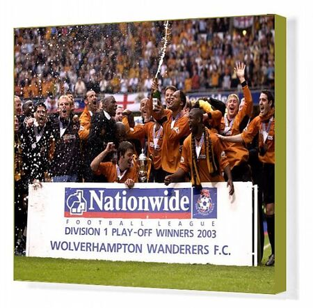 Wolverhampton Wanderers team celebrate winning promotion after the play off final win against Sheffield United