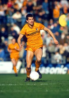 history/hall fame steve bull/barclays league division notts county vs wolves