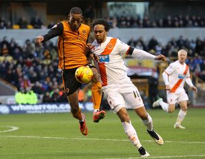 Sky Bet Championship - Wolverhampton Wanderers v Blackpool - Molineux Stadium