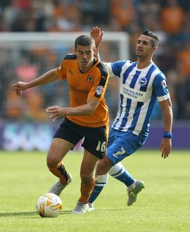 Sky Bet Championship - Wolves v Brighton and Hove Albion - Molineux